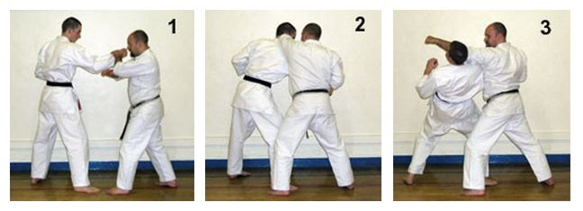 The Basics of Bunkai: Part 5