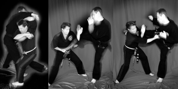 Martial Arts Training Online with Dave Johnson