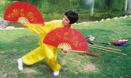 Taiji Fans