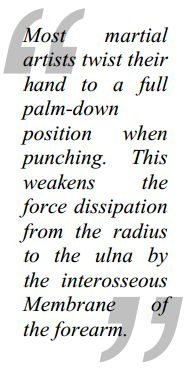 Punching Power by Chris Thomas